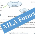 What Is MLA Format For An Essay?
